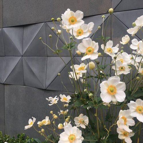 אריחים דקורטיביים לקיר